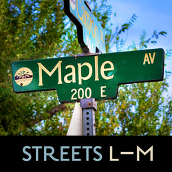 Potential Landmarked Homes, Streets L–M, Picture of Maple Ave Streetsign